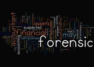 Forensic Accountants